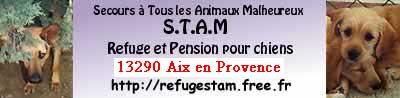Refuge STAM